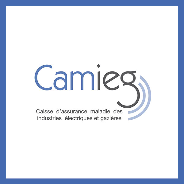 MOTION : Excédents CAMIEG 2020 – Bureau CMCAS APO du 17 avril 2020